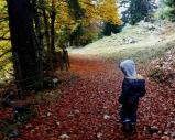 Herbst im Kinderhotel Oberjoch
